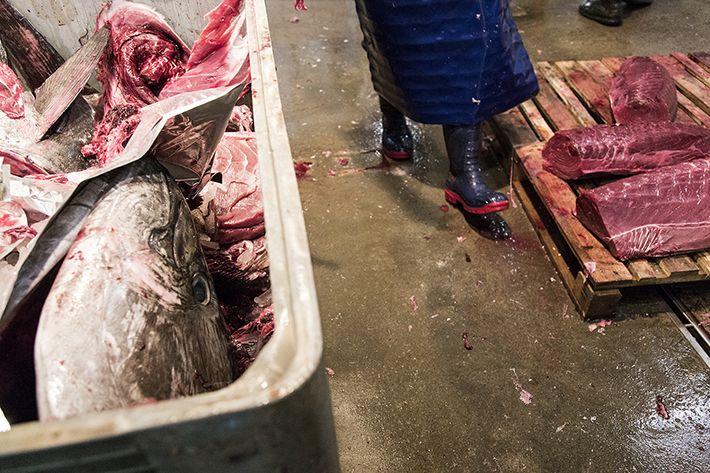 El mercat del peix. Foto: Angela Silva