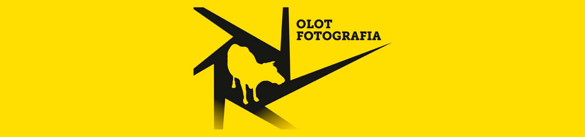 Biennal Olot-Fotografia