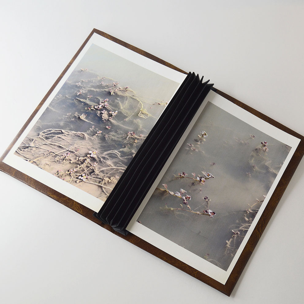 Enquadernació d'àlbums fotogràfics