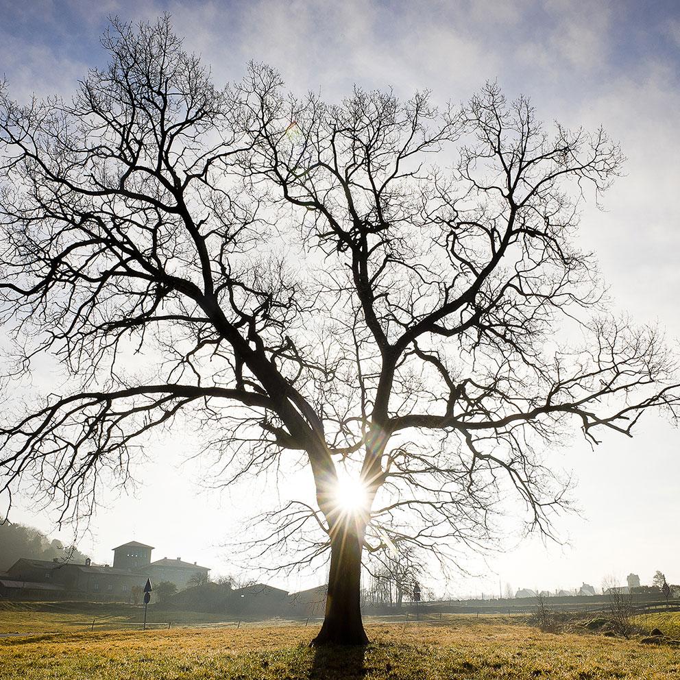 taller-fotografia-natura-banner